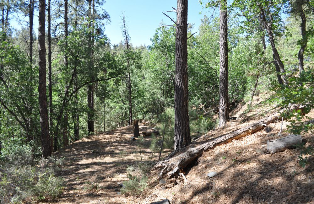 0 Jack Pine Road Lot #15 and #16, Prescott, AZ 86303