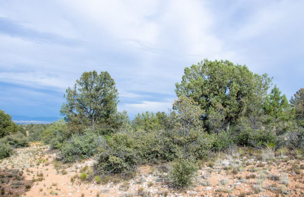 0 W Road 2 South, Prescott, AZ 86305