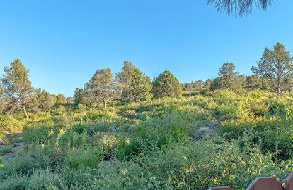 3131 E Swanlake Circle, Prescott, AZ 86303