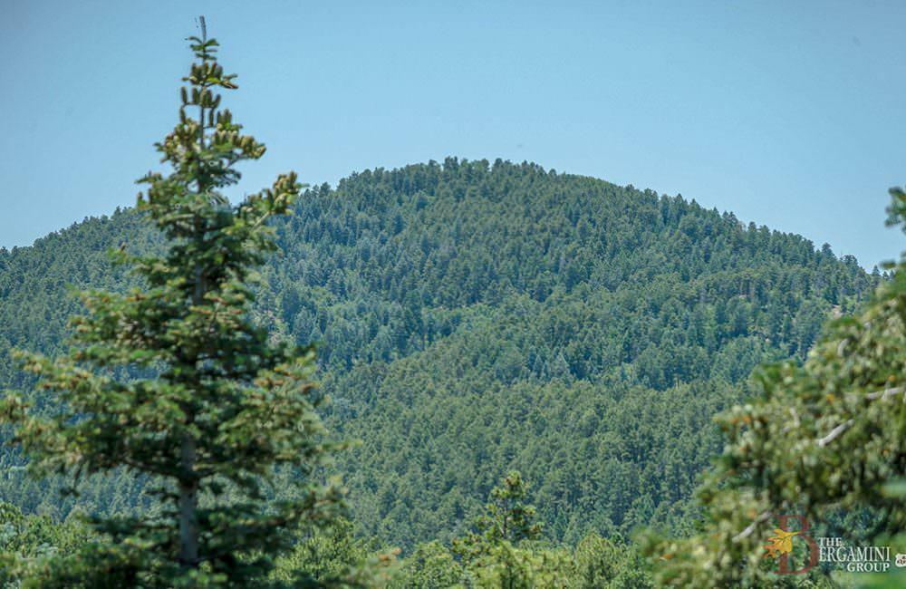 8583 S Hoot Owl Ridge Drive, Prescott, AZ 86303