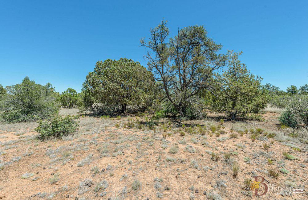 15500 N Heatherbrae Drive, Prescott, AZ 86305