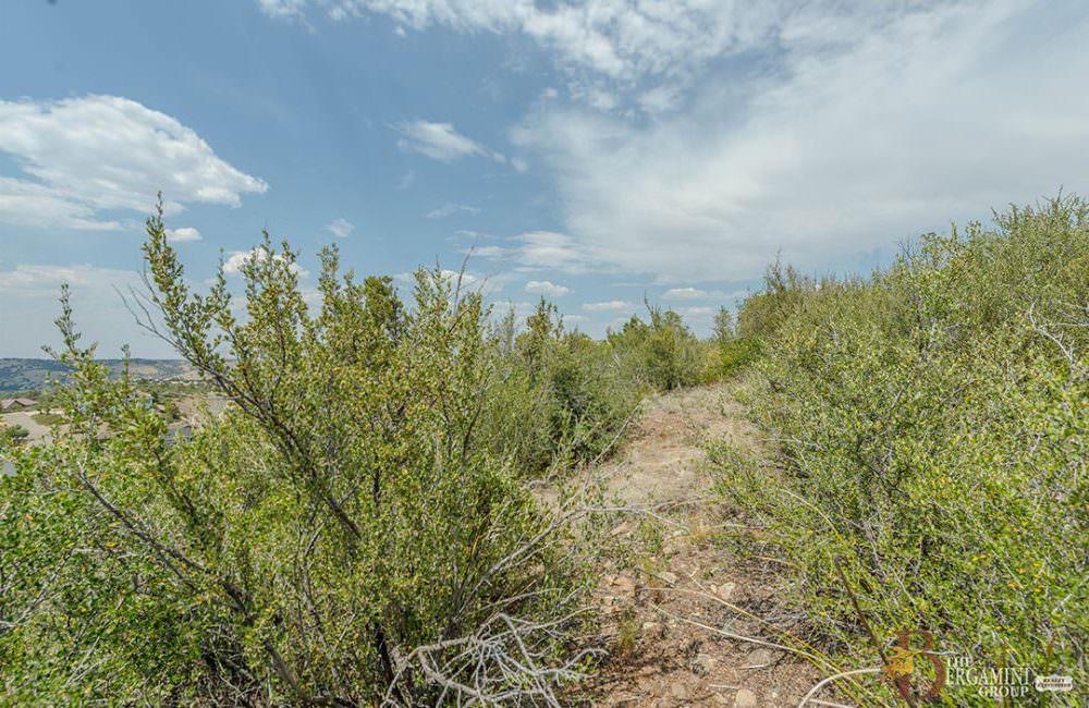 1237 Newport Ridge Drive, Prescott, AZ 86303