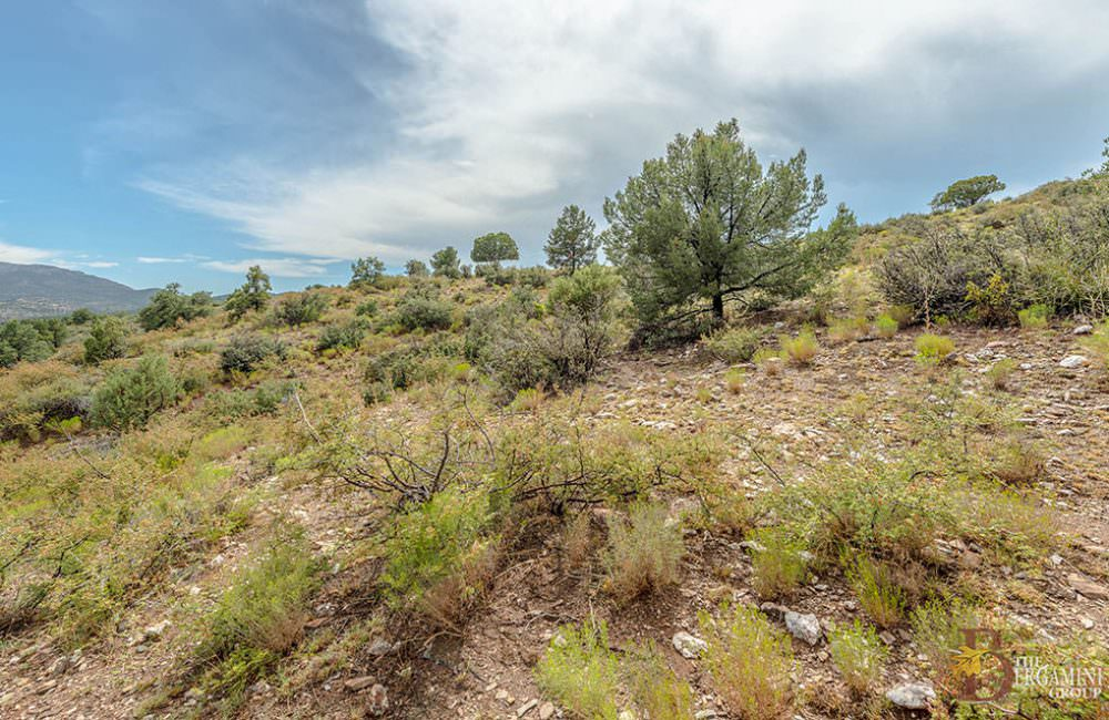 112xx N Dove Tail Road Q, Prescott, AZ 86305