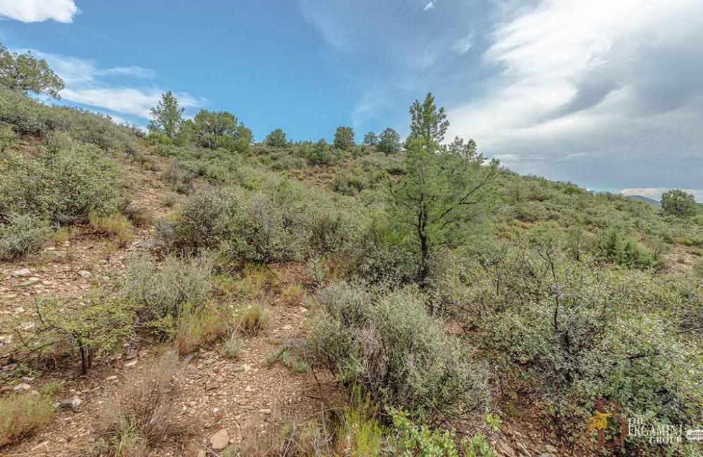 112xx N Dove Tail Road R, Prescott, AZ 86305