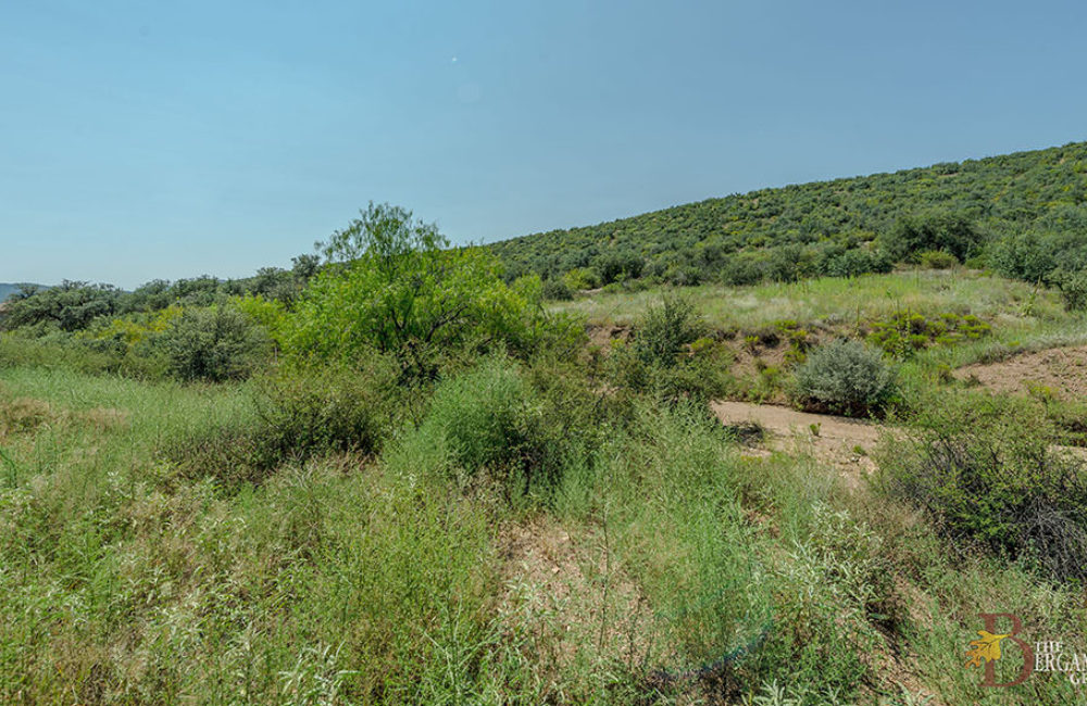 12375 E Alpine Ridge Road, Dewey, AZ 86329
