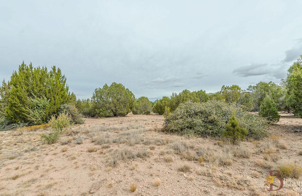 14585 N Double Adobe Road, Prescott, AZ 86305